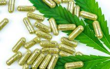 cbd capsules benefits